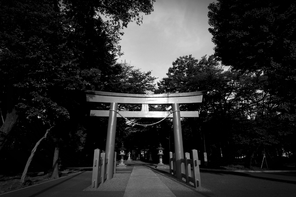 Shrine-DSC 6345-martosc-s